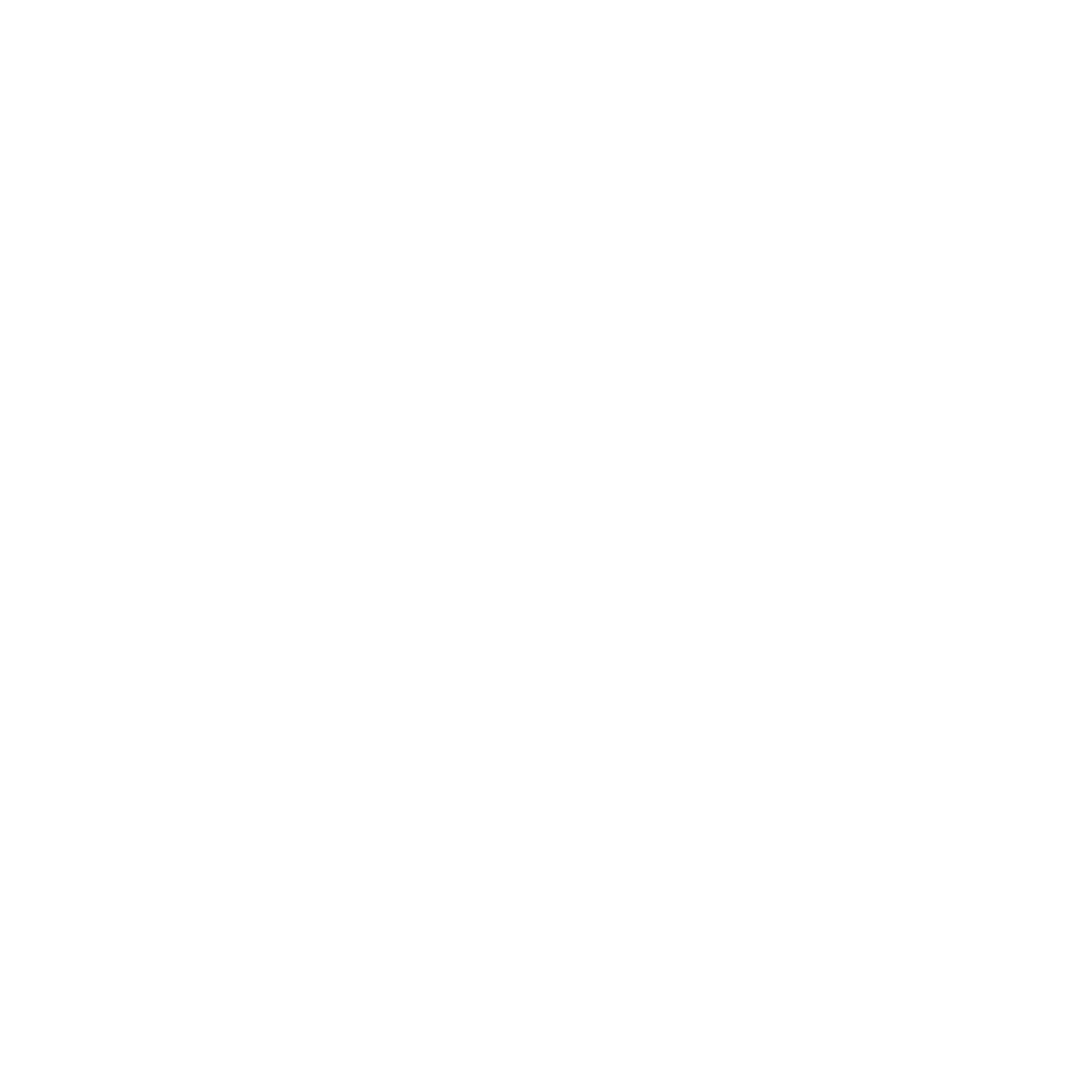 logo zn production